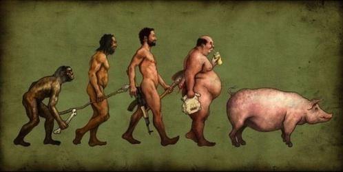 EvolutionDarwinPig